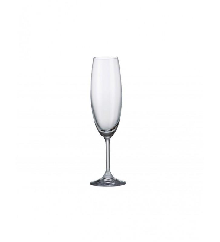 Set 6 Pahare sampanie cristal Bohemia, Klara/Sylvia- 220 ml